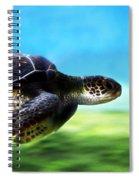 Green Sea Turtle 2 Spiral Notebook