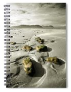 Green Stones On A North Wales Beach Spiral Notebook