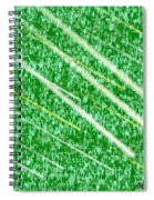 Green Streak Spiral Notebook
