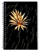Green Streaks Spiral Notebook