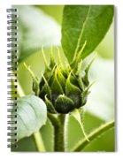 Green Sunflower Bud Spiral Notebook