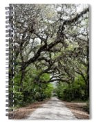 Green Swamp Oak Bower Spiral Notebook