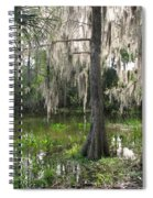 Green Swamp Spiral Notebook