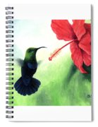 Green-throated Carib Hummingbird And Red Hibiscus Spiral Notebook
