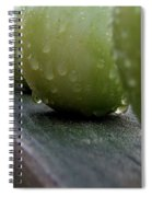 Green Tomato's Spiral Notebook