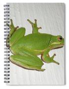 Green Tree Frog - Hyla Cinerea Spiral Notebook