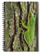 Green Tree Frog Thinking Spiral Notebook