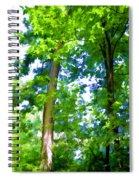 Green Trees 1 Spiral Notebook