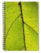 Green Veins Spiral Notebook