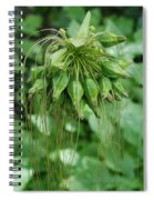 Green Vines Spiral Notebook