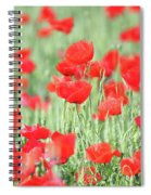 Green Wheat And Red Poppy Flowers Spiral Notebook