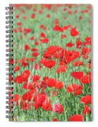Green Wheat With Poppy Flowers Spiral Notebook