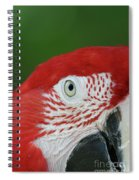 Green-winged Macaw Close Up Spiral Notebook