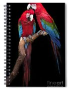 Green Winged Macaw Portrait Spiral Notebook