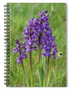 Green-winged Orchids Spiral Notebook
