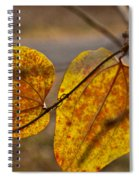 Greenbrier Glow Spiral Notebook