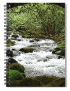 Greenbrier River Scene 2 Spiral Notebook