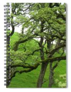 Greening Up Spiral Notebook