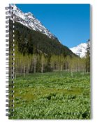 Greens And Blues Of The Maroon Bells Spiral Notebook