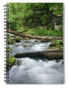 Greer Spring Branch 1 Spiral Notebook