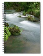 Greer Spring Branch 2 Spiral Notebook