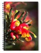 Grevillea Ground Cover Spiral Notebook