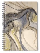 Grey And Gold Classic Spiral Notebook