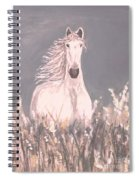 Grey And White Spiral Notebook