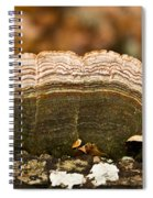 Grey Bracket Fungi Spiral Notebook