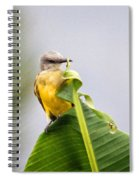 Grey Headed Tanager Spiral Notebook