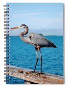 Grey Heron Spiral Notebook