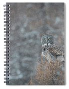 Grey In Snow Spiral Notebook