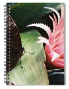 Grey Pansy Pink Bromeliad Spiral Notebook