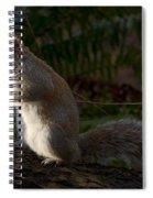 Grey Squirel Spiral Notebook
