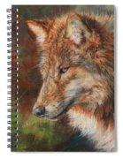 Grey Wolf Face Spiral Notebook