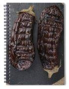 Grilled Aubergine Spiral Notebook