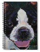 Grins Spiral Notebook