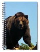 Grizzly-7746 Spiral Notebook