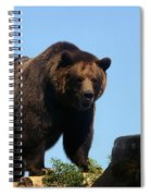 Grizzly-7747 Spiral Notebook