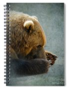Grizzly Bear Lying Down Spiral Notebook