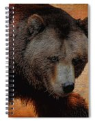 Grizzly Bear Painted Spiral Notebook