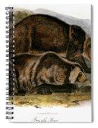 Grizzly Bear (ursus Ferox) Spiral Notebook