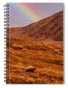 Grizzly Under The Rainbow Spiral Notebook