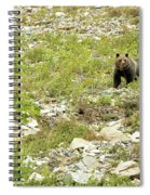 Grizzly Watching People Watching Grizzly No. 2 Spiral Notebook