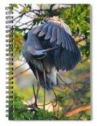 Grooming Blue Heron Spiral Notebook