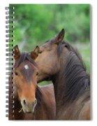 Grooming Horses Spiral Notebook