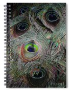 Groovy Peacock Spiral Notebook