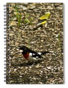 Grosbeak With Quizzical Look Spiral Notebook