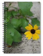 Grounded Sunflower Spiral Notebook