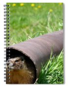 Groundhog In A Pipe Spiral Notebook
